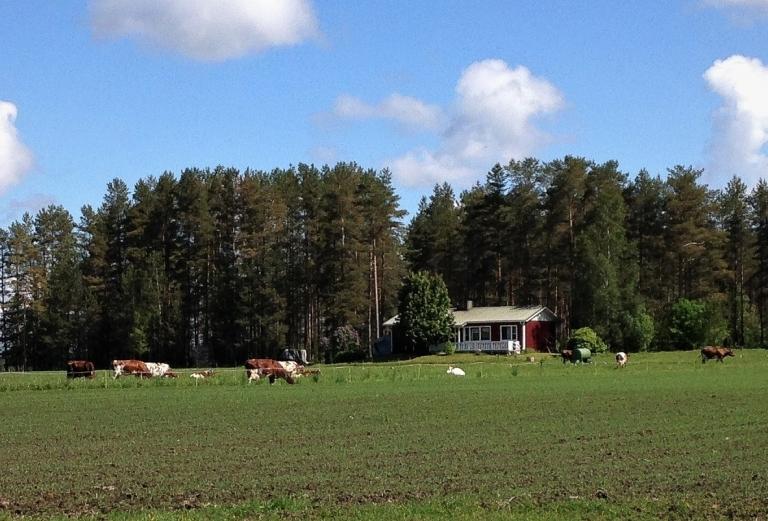 Maatilamajoitus